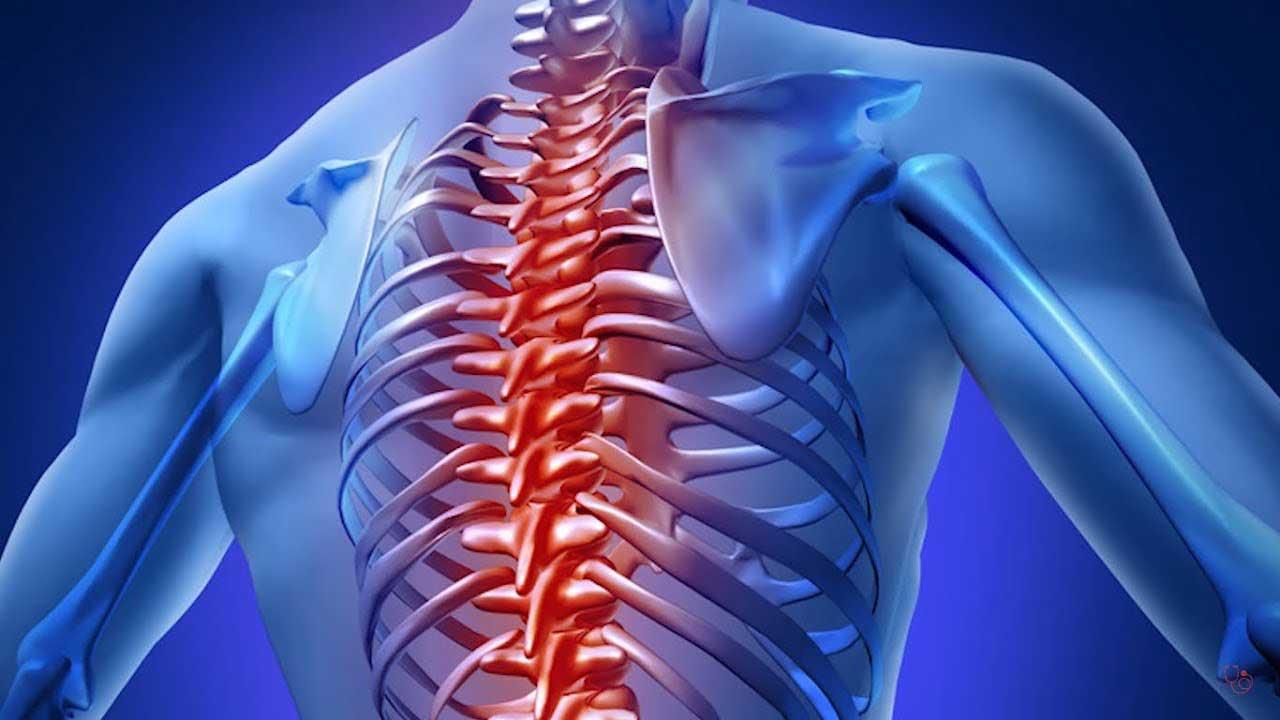 כאבי גב תחתון פיזיורתפיה